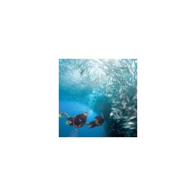 Nawigacja podwodna