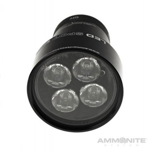 Ammonite System Led Spot